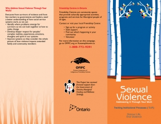 Sexual Violence - Addresing it Through Your Work - Traking Inistitutional Process (T.I.P